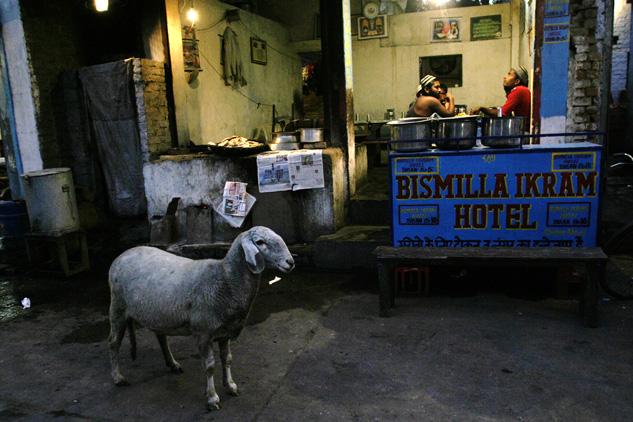 http://www.danicardona.com/files/gimgs/5_touristdcardona03.jpg